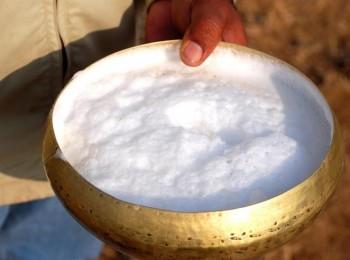 """""""الغذاء والدواء"""" تُحذر: 4 أمراض خطيرة تنتج عن شرب الحليب الخام"""