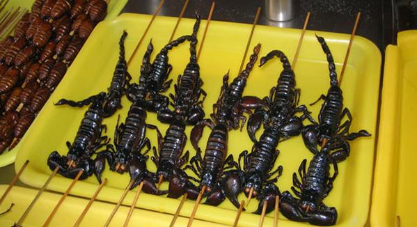 """مهرجان لتقديم أطباق """"شهية"""" من الحشرات في لندن"""