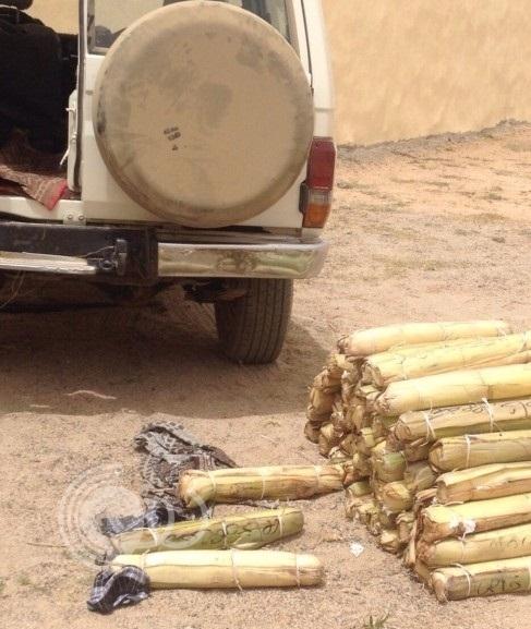 جازان : دوريات مركزالحانبه تلقي القبض على 250 حزمة قات مهربه