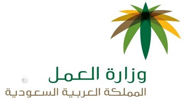 """""""عمل جازان"""" يبقي على 73 موظفاً سعودياً بالمدينة الاقتصادية"""