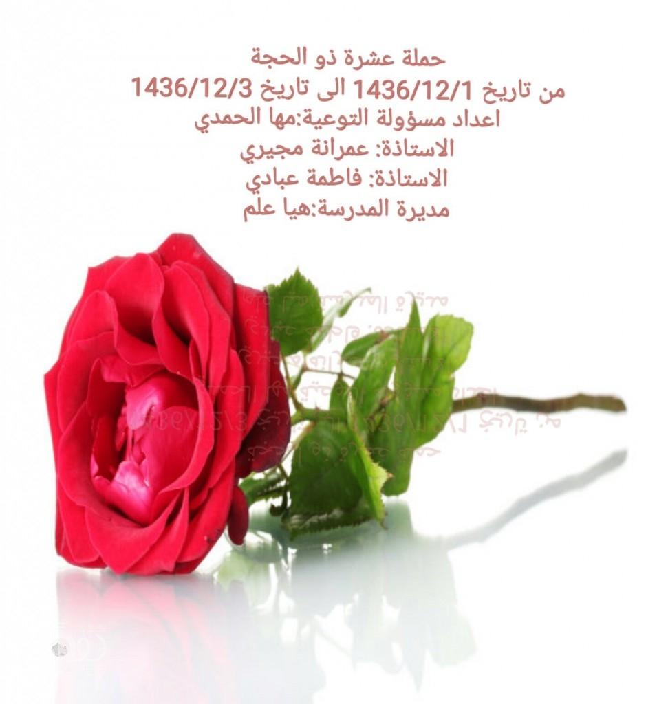 الابتدائية الخامسة بمحافظة بيش تنفذ سلسلة من البرامج