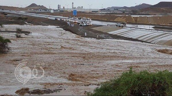 فيديو وصور: أمطار وسيول بعدد من الأودية بمنطقة تبوك صباح اليوم