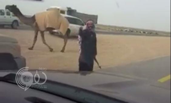 """بالفيديو.. مالك إبل يحمل في يده """"رشاش"""" يوقف السيارات بطريق سريع حتى تعبر إبله"""