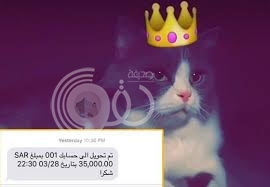 """شاب يبيع قط صديقه بـ35 ألفاً عبر """"سناب شات"""" ويثير جدلاً على """"تويتر"""""""