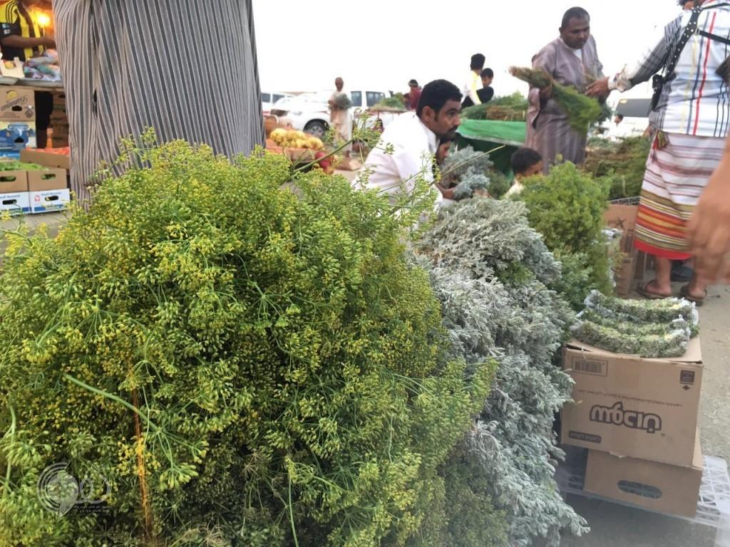 بلدية الحقو تجهز مواقع صلاة العيد وموقع الاحتفال – (صور)
