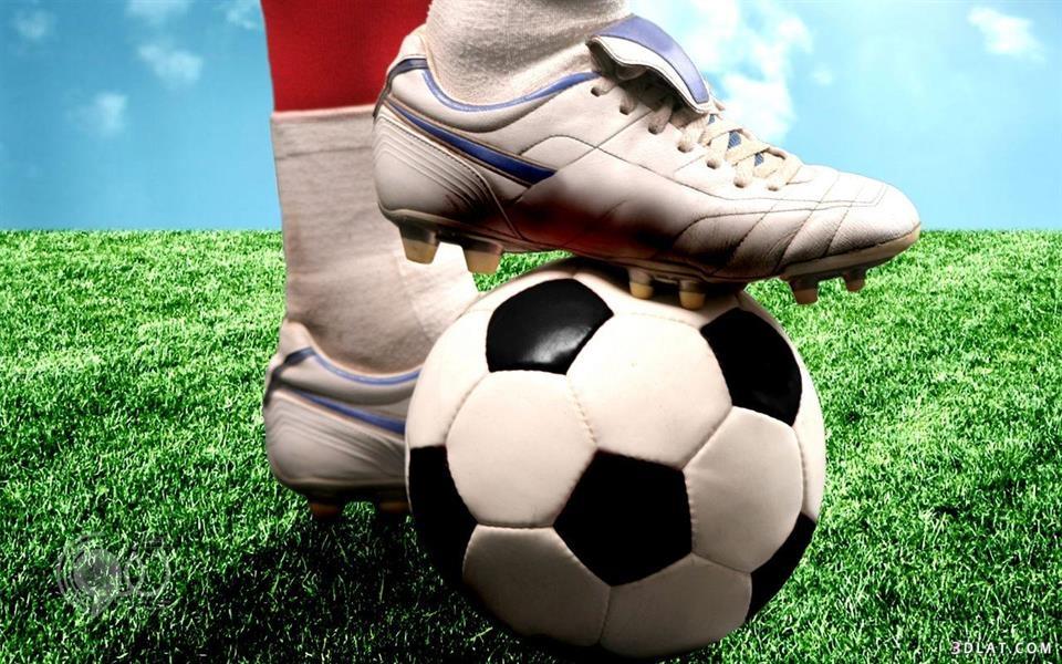 ولي العهد يوافق على استعانة الأندية الرياضية بالمقيمين من مواليد السعودية