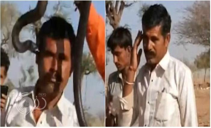 """في مقطع فيديو: رجل هندي وقف ليلتقط صورة مع ثعبان """"الكوبرا"""".. فانتهى المشهد بكارثة"""