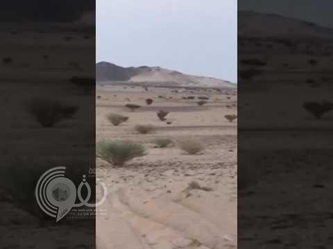 شاهد.. مطاردة بين دوريات الأمن وأكبر مهرب مخدرات في تثليث