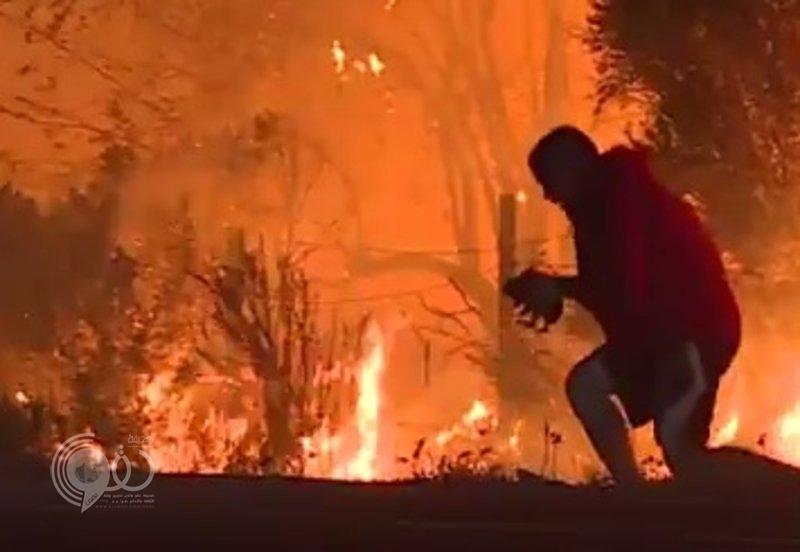 بالفيديو.. رجل يقتحم النيران لإنقاذ أرنب