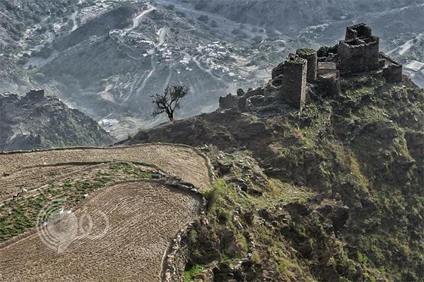 """صورة بيانية تكشف ترتيب أعلى 10 قمم جبلية في """"جازان"""""""