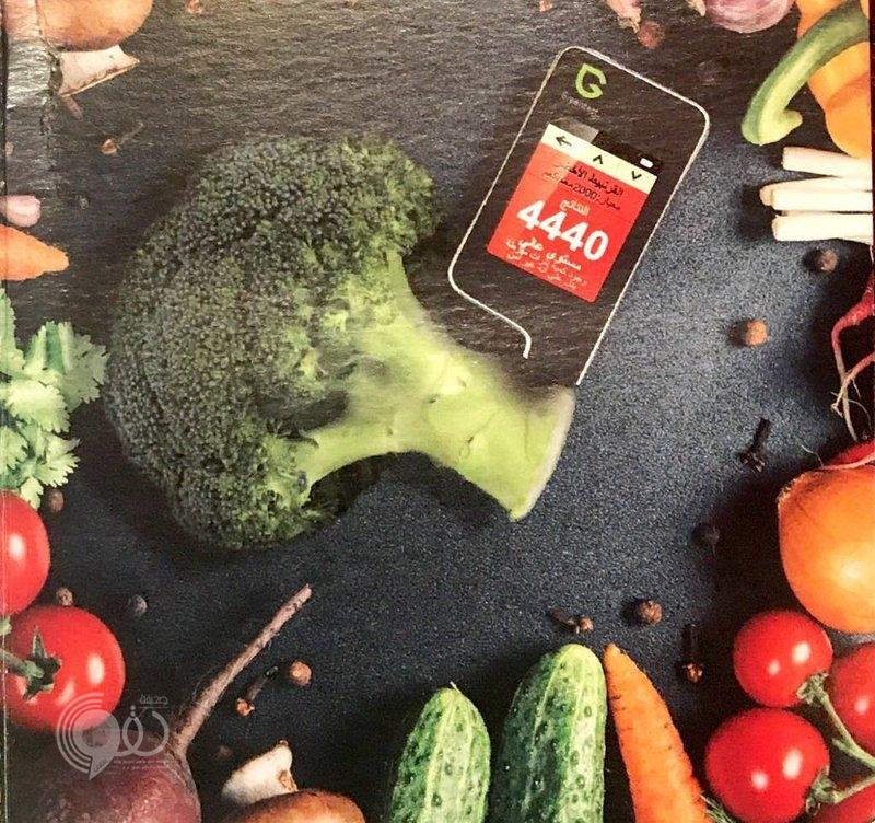 """أجهزة حديثة للكشف عن مستوى المبيدات في خضراوات """"أبوعريش"""""""