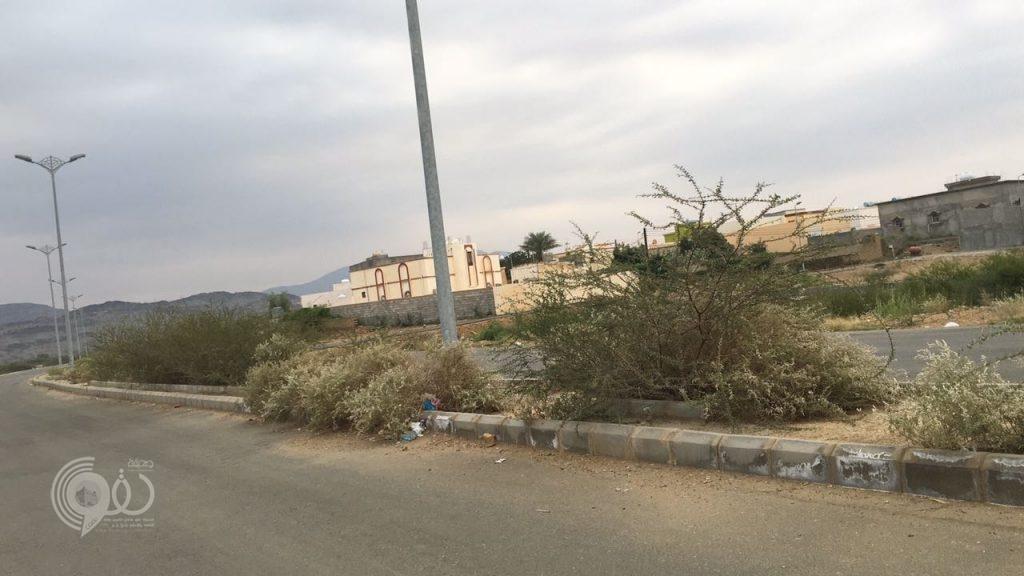 """أهالي """"القوام والمنصع"""" التابعة لمركز الحقو يُطالبون البلدية بمساواتهم بباقي القرى في النظافة والخدمات"""