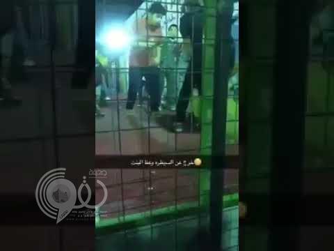 #عاجل بالفيديو .. أسد يهاجم طفلة في ربيع جدة .. وتوجيه بالتحقيق