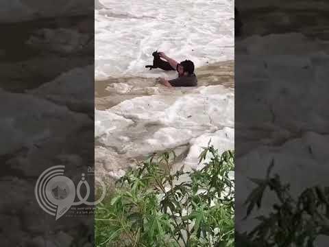 شاهد بالفيديو.. شاب يغوص في مياه الأمطار المتجمدة لإنقاذ قطة