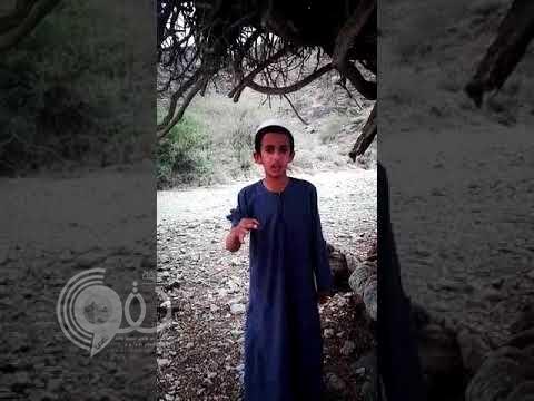 شاهد بالفيديو.. طفل سعودي يناشد ولي العهد ويطالبه بطلب غريب