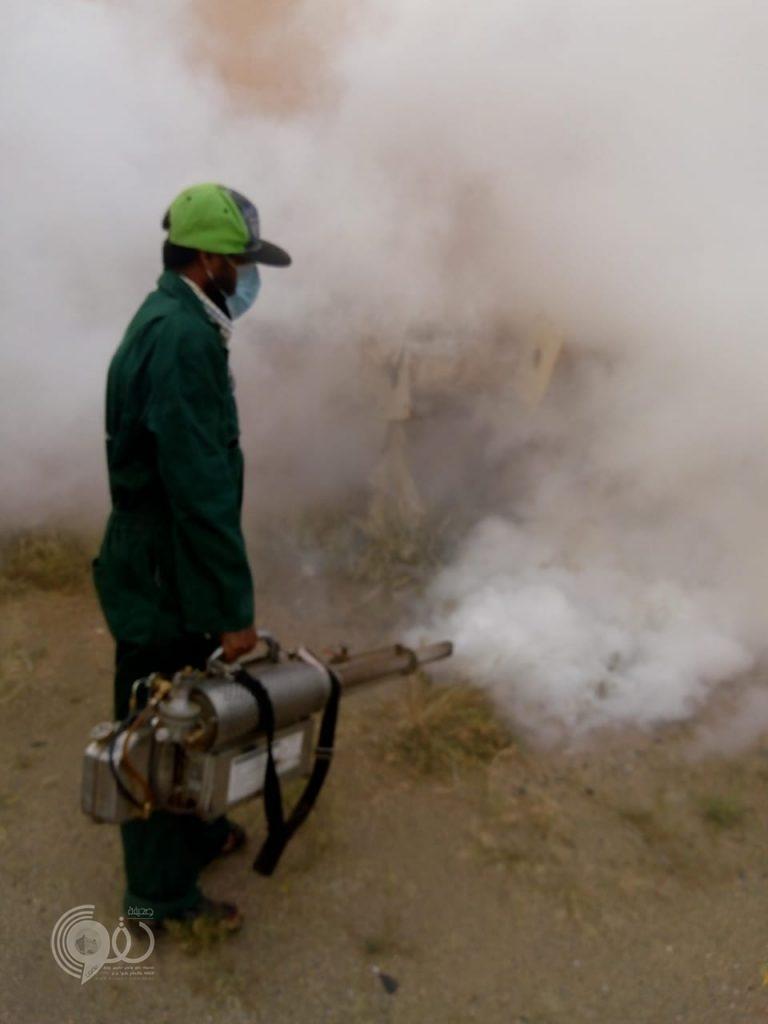 بلدية الريث تكافح نواقل الامراض – صور