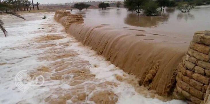 شاهد.. الأردن يعلن حالة الطوارئ بعد سيول اجتاحت منطقة البحر الميت