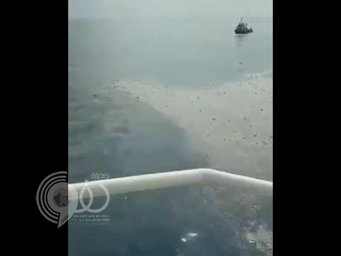 بالفيديو والصور.. تحطم طائرة ركاب في إندونيسيا على متنها 188 شخصاً والعثور على حطامها