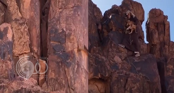 بالفيديو.. مشاهد إنسانية لمواطن ينقذ كلبا عَلِقَ بين صخرتين