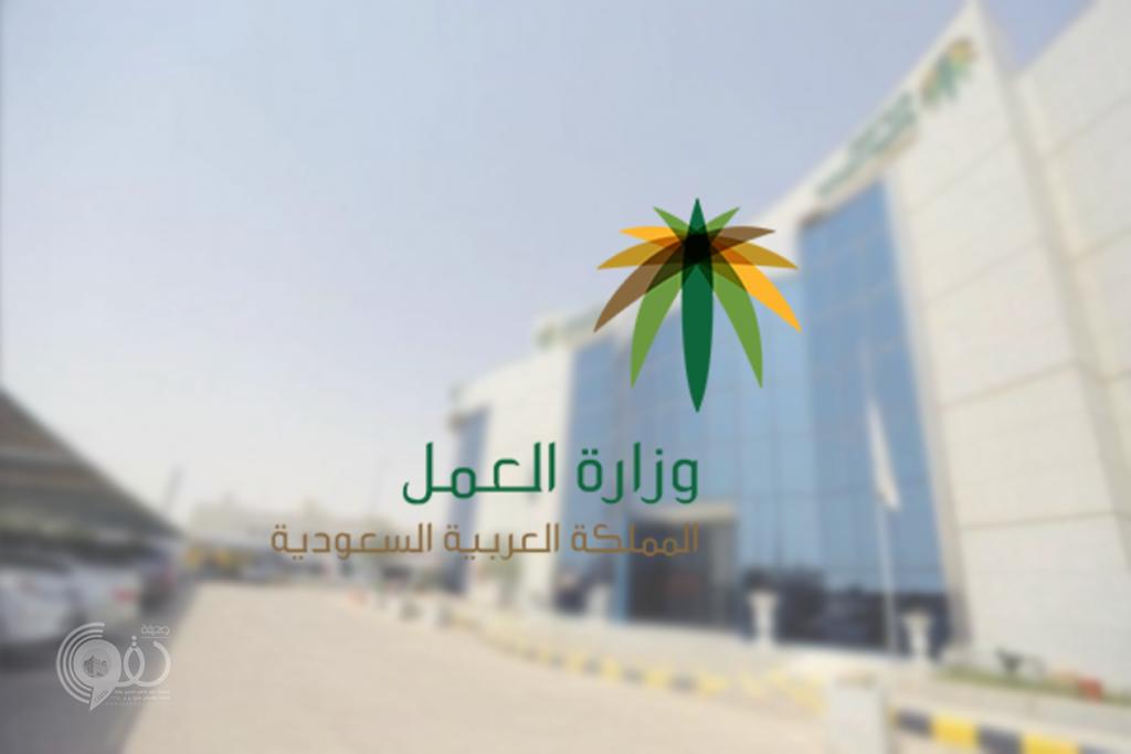 وزارة العمل تزف بشرى لمنشآت القطاع الخاص