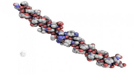 مصادر طبيعية لـ #بروتين_الكولاجين.. تعرف عليها