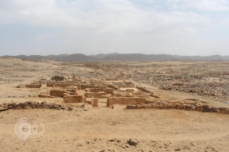 التعدين جزء رئيسي من خطط المملكة في رؤية محمد بن سلمان