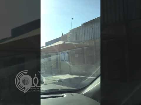 شاهد بالفيديو .. مجموعة قردة تهاجم ابتدائية بنات في جدة