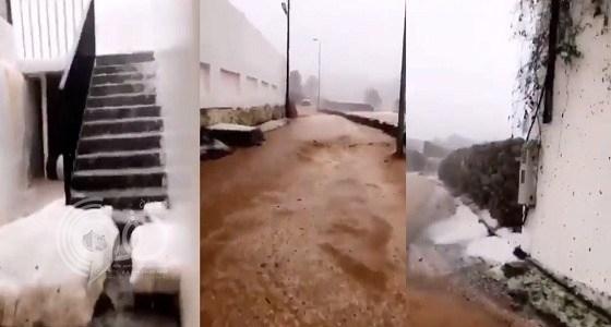 بالفيديو.. مشاهد عجيبة تخطف القلوب في سيول النماص