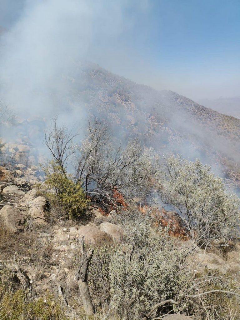 شاهد.. جهود كبيرة تنتهي بالسيطرة على حريق غابات جبال الحشر شرق جازان