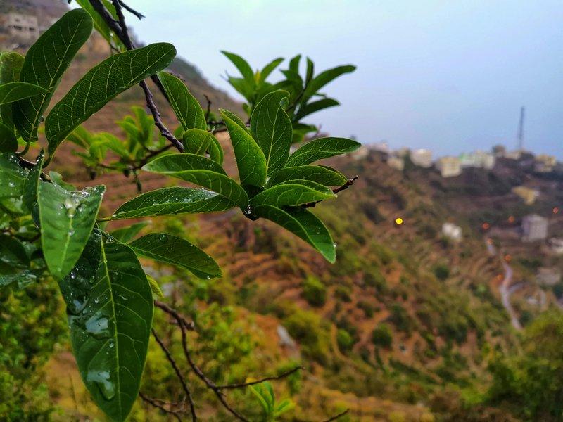 """جبال """"فيفاء"""" تتزيَّن بحبات البَرَد.. والأمطار الغزيرة تنعش الأجواء للمتنزهين"""