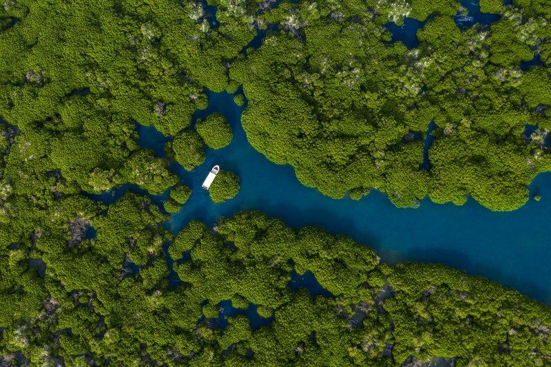 """""""بدر بن فرحان"""": نعمل على تسجيل محمية جزر فرسان في اليونسكو"""